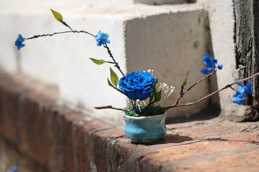 hoa hồng xanh phù hợp người mệnh mộc