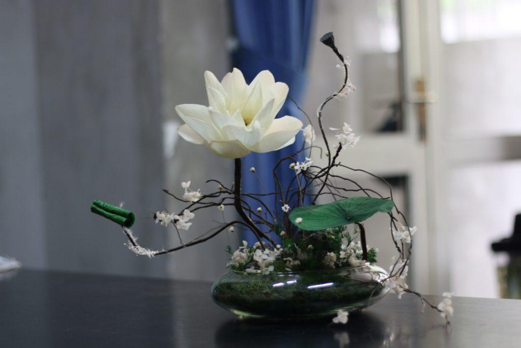 Hoa sen khô màu trắng