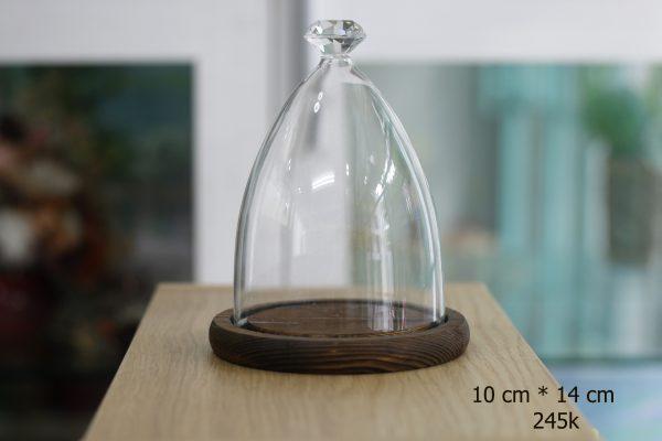 Nắp chụp thủy tinh đế gỗ Bell Diamond 10x14 cm
