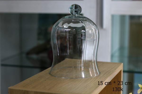 Nắp chụp thủy tinh D3012 15x23 cm