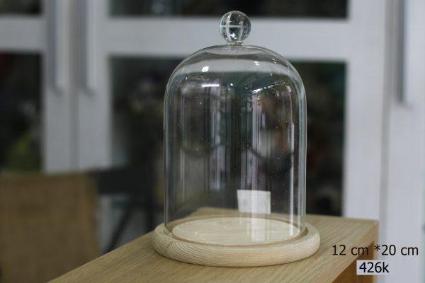 Nắp chụp thủy tinh đế gỗ Dom Bell 12x20 cm