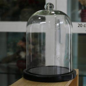 Nắp chụp thủy tinh đế gỗ 20x30 cm