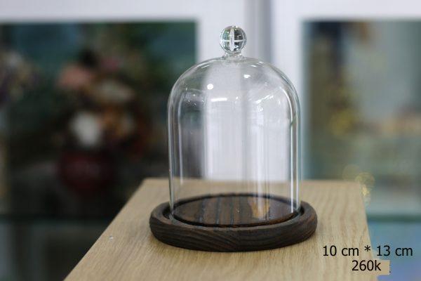 Nắp chụp thủy tinh đế gỗ Dom Bell 9x13 cm