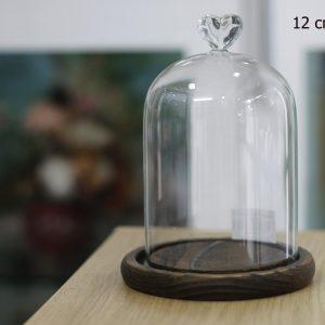 Nắp chụp thủy tinh đế gỗ Dom Heart 12x20 cm