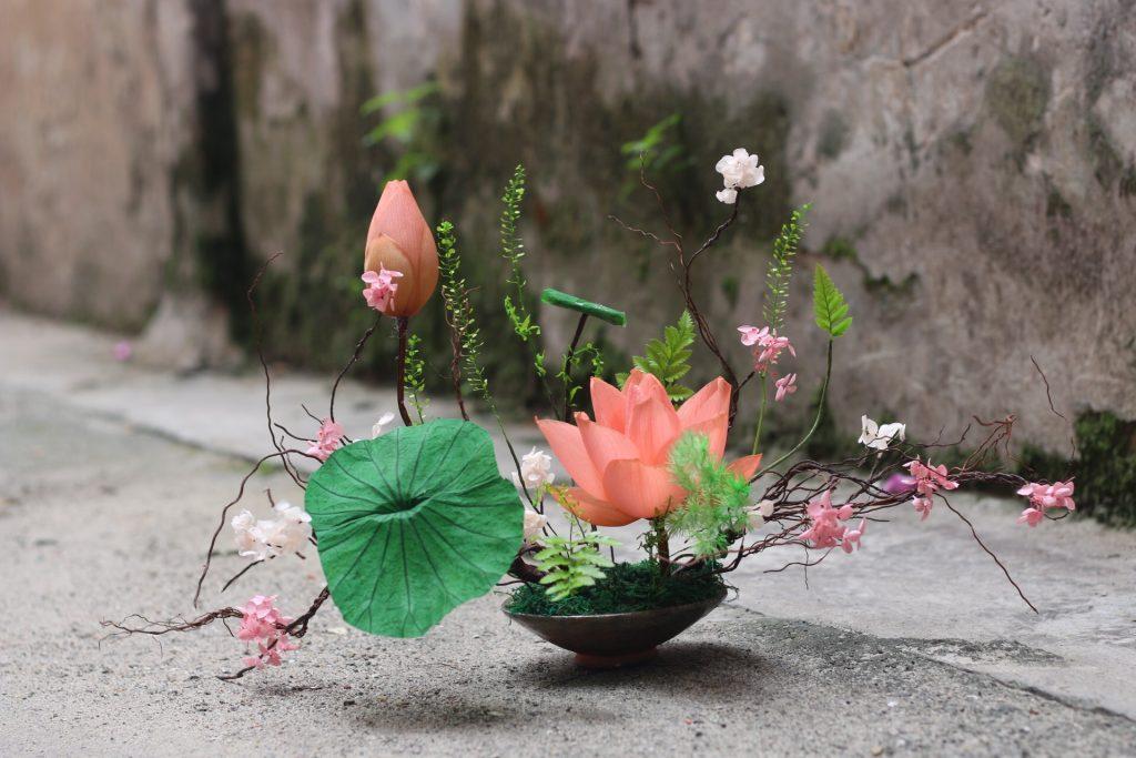 hoa khô chưng tết